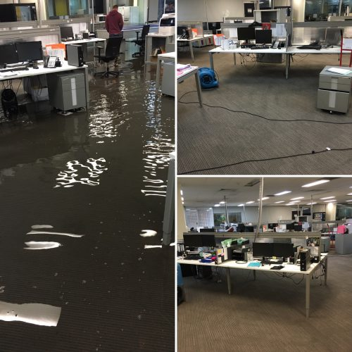 Flood Restoration Before and After